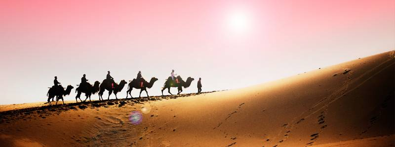 【丝绸之路-大漠胡杨】额济纳旗胡杨林、敦煌鸣沙山、嘉峪关11日自驾