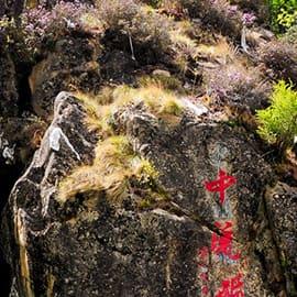 """""""中流砥柱""""位于尼洋河中游,其所处在的位置山势险峻,陡象横生。石柱上长着一棵松树,并有多种植被装点,远处眺望,甚为壮观。因之奇特的造型和险要的位置,被当地人奉为神物,相传这块巨石是工布地区的守护神的座椅。"""