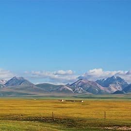 独库公路又名天山公路,是国道217线的一段(桩号为K553至K1089),宛如一条巨龙盘卧天山。它连接南北疆,横亘崇山峻岭、穿越深山峡谷,连接了众多少数民族聚居区。它的贯通,使得南北疆路程由原来的1000多公里缩短了近一半,堪称是中国公路建设史上的一座丰碑。
