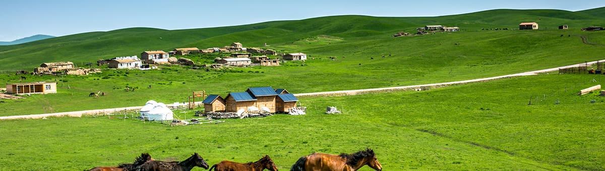 甘南大草原