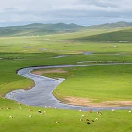 """莫尔格勒河也成莫日格勒河,有""""天下第一曲水""""之称。它是由涌泉汇聚而成,百转千回,犹如草原上飘落的柔软绸带,是呼伦贝尔草原上一大奇观。 莫尔格勒河是一条河道十分狭窄,但极度弯曲的河流。从空中俯瞰,河水蜿蜿蜒蜒,就象是一条蔚蓝色绸带,一会儿东行,一会儿西走,一会儿南奔,一会儿北进,其弯曲程度,可以用九曲十八弯来形容。"""