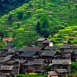 """小黄侗寨如今已是天下闻名的""""侗歌之乡""""和""""音乐天堂"""",到那里去旅游的确别有情趣。小黄包括小黄、高黄、新黔三个寨子,有600多户、3000多人。小黄的侗歌在侗乡中很有名,侗语称之为""""嘎小黄"""",即""""小黄的歌""""。"""