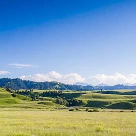 """那拉提草原位于伊犁州新源县境内,是世界四大河谷草原之一,素有""""祖母绿宝石""""之称。在草原上山坡上,草原美景一览无余,还有被称作""""宇""""的白色毡房,不仅点缀着青山绿水,而且还证明着他们是千百年来生活在这里的主人。在那拉堤大草原上还可骑""""汗血宝马""""尽情驰骋,体会当地哈萨克民俗风情。"""