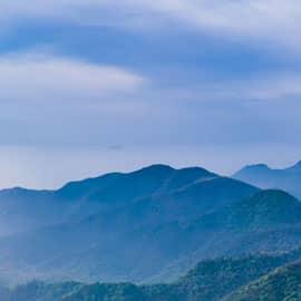 """鸡公山,位于河南省信阳市浉河区,是中国四大避暑胜地之一,也是新中国第一批对外开放的全国八大景区之一。鸡公山有""""青分豫楚、襟扼三江""""之美誉,""""佛光、云海、雾凇、雨淞、霞光、异国花草、奇峰怪石、瀑布流泉""""被称为八大自然景观,山上有清末民初不同国别和风格的建筑群,有""""万国建筑博物馆""""之美称,是中国历史上第一个公共租界。"""