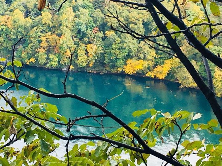 吉林通化三角龙湾是到长白山自驾旅游的第一站,门户景点,景区里主要是由几个水湾组成,沿湖而建的木道,走起来惊险又刺激。