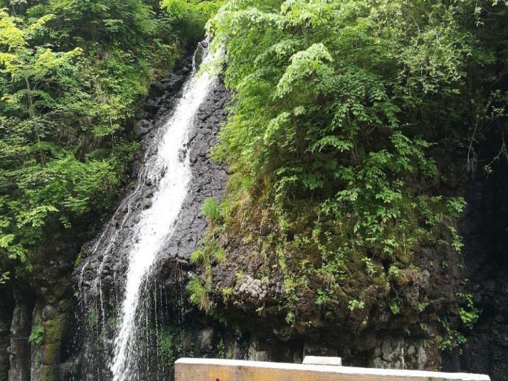 吉林长白山望天鹅火山国家地质公园相距长白县城50公里,自驾游开车也不过四五十分钟,景区属于鸭绿江上游,是重要的水源地,景区里的代表景点是一个长500米的石瀑群。