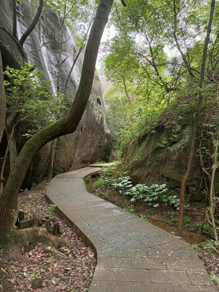 飞天山国家地质公园,这么多年,第一次观赏这种奇特的丹霞风貌。它的风貌足够拍成大片的感觉,景区非常大,时间够的话可以玩一天都可以,想成为网红的小姐姐们可以来 景区非常原始,很多悬崖峭壁,非常陡,也要注意安全