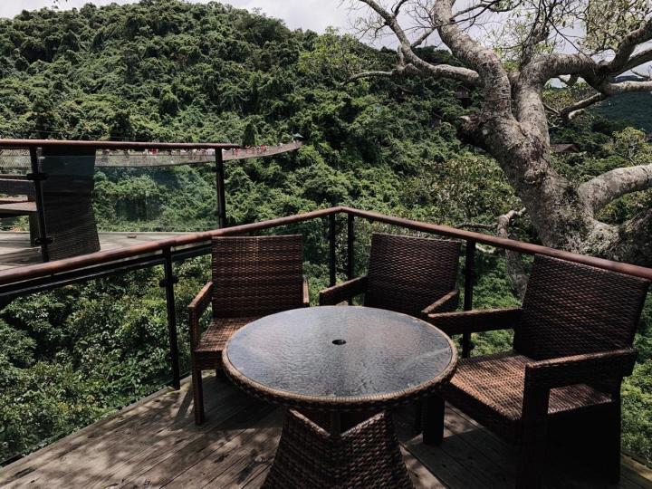 亚龙湾热带天堂森林公园,适合亚热带的植物,各种各样没有见过的植物茂密生长,里面空气特别好!很值得来,可以俯瞰亚龙湾全景,去的时候天气也超棒,不枉此行