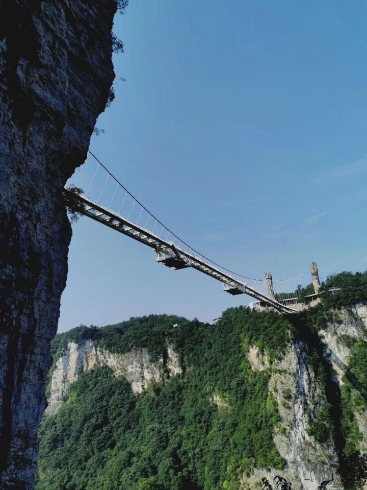张家界大峡谷玻璃桥是一个惊险的项目。感觉站上去都需要勇气的,桥上能直接感受到峡谷里的风,桥下是长满的树叶的茂密森林