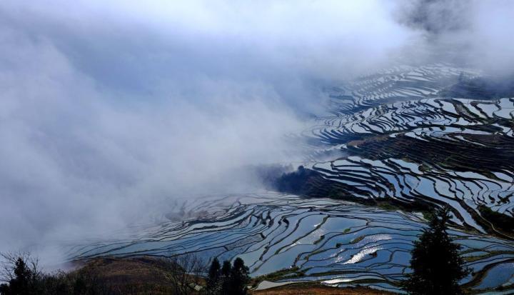 云南元阳多依树景区是一个淳朴的传统村落,元阳多依树景区里居住的大都是哈尼族人,村里几乎都是乡土道路,开车都不能直接开进景区,但是村里的梯田绝美