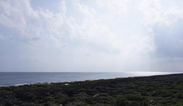 台湾最南点是台湾屏东县恒春镇最南点靠近巴士海峡,也能远眺太平洋,但是最南点的停车场距离很远,我们自驾游停车走到景区至少走了二十分钟