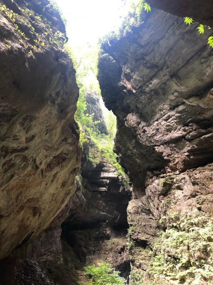 龙水峡,进了景区不久就是一段幽深的隧道直往地下奔去,出了隧道是电梯,这可以俯瞰一下,然后坐电梯继续向下,这才真正进入主题。出了电梯沿着栈道走就行了。虽是冬季,龙水峡地缝仍是天然氧吧,植被茂盛,树木成荫,山涧潺潺流水,激流飞瀑。一路上都是下台阶的路,我们边走边玩,大约需要2小时。