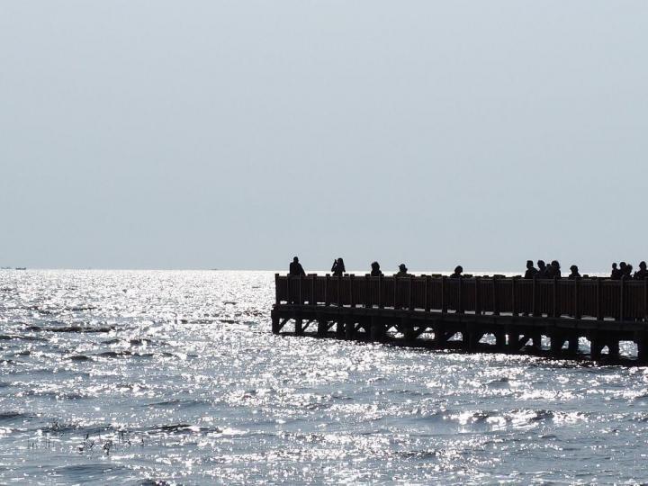 盘锦红海滩,劝想来红海滩旅游的朋友可以放弃了,网上的图片都是三年之前的宣传图,现在根本没有红海,都是黑泥土,盘锦红海滩门票140,宣传说是9月份,10月份风景最好。我们专门趁着风景好的时间来的,但还是一片泥土,非常失望。