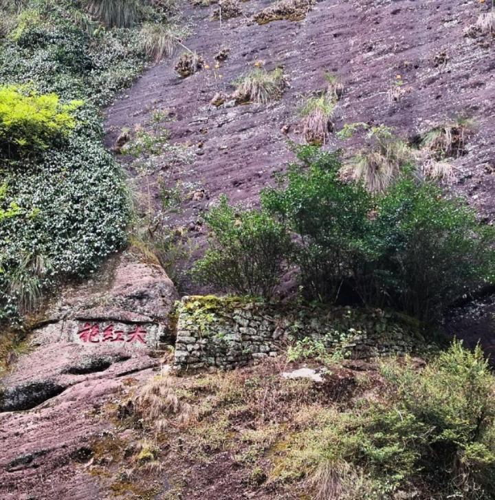 武夷山风景名胜区,武夷山温泉是天然温泉,太舒服啦,又解压又排毒。太阳好 风景很棒 爬山的过程还行吧 半山腰亭子上去之后阶梯比较陡峭