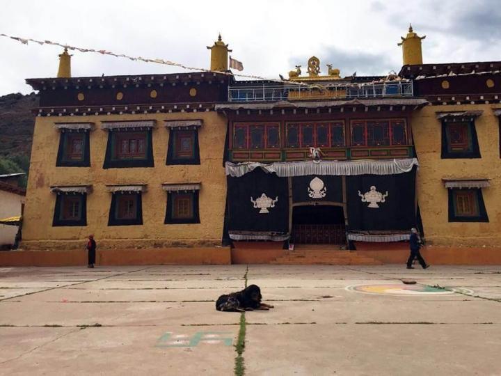 维色寺,维色寺是芒康最近便的景点,也没有门票,邮政局就在斜对面;寺庙外面一周都是转经筒,虔诚的信徒在围着寺庙一圈圈诵经。