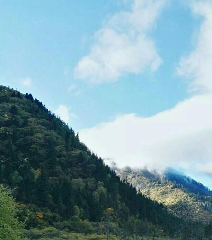 禾木草原,禾木草原位于布尔津县喀纳斯河与禾木河交汇区的山间断陷盆地中,禾木的草原雍容大气,可以一览山崖下的云烟渺渺、山野人家,还可以近观牧民们策马远行的身影。