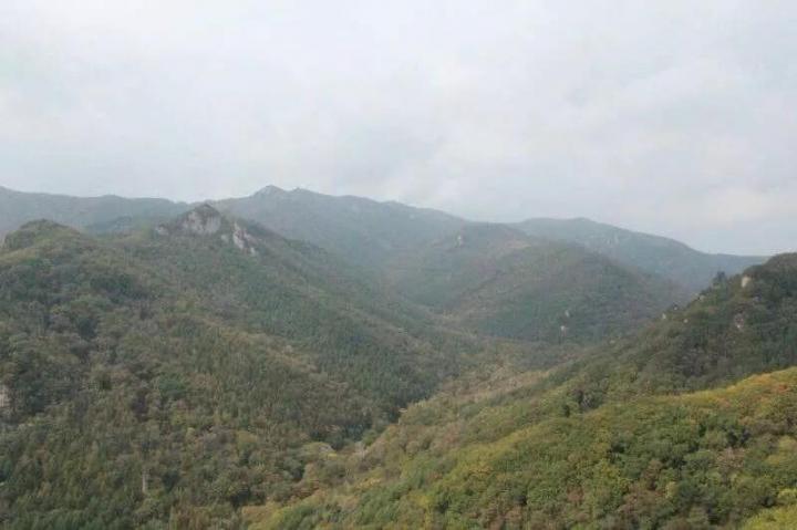 天桥沟国家森林公园,天桥沟国家森林公园涉及区域太大了,分成四大景区:天宫景区、莲花峰景区、玉泉顶景区、晓月峰景区。 总的来说像是一个有山石有溪水的巨型公园,里面还有很多红色旅游景点,普及很多革命知识和历史文化。