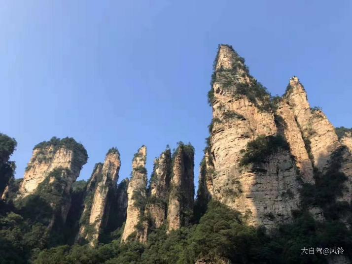 袁家界,袁家界面积约1200公顷,平均海拔1074米,袁家界是电影阿凡达的主要取景地,景还是挺美的;但是这一段游客超多,是所有大小旅行团必来的地方,体验不是很好。
