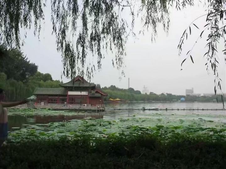 """大明湖,大明湖位于山东省济南市市中心偏东北处、旧城区北部,大明湖是繁华都市中一处难得的天然湖泊,与趵突泉、千佛山并称为济南三大名胜,也是泉城济南重要的风景名胜、开放窗口和闻名中外的旅游胜地,素有""""泉城明珠""""的美誉。大明湖门票30元,还是很合理的; """"皇上,你还记得大明湖畔的夏雨荷吗?"""",为了这句话,也得来大明湖找一找夏雨荷啊,游玩建议:整个大明湖东边的建筑和景点更多,时间不充裕的话,直接从湖东边开始游玩就行。"""