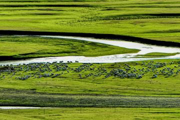 内蒙古呼伦贝尔大草原5日自驾游:莫日格勒河-满洲里-彩带河滑草-草原骑马5日落地自驾游
