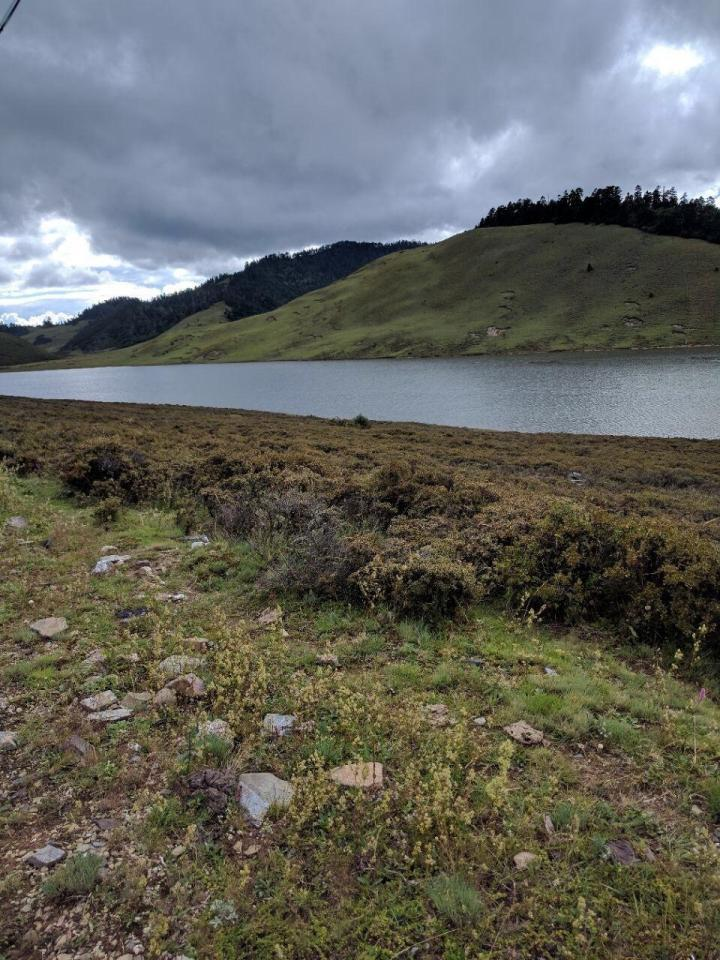 长海子,长海子位于凉山州木里藏族自治县县城西北部的康坞山顶,寸东海子远远望去像一条长长河流,走到中间看到湖中漂浮着草甸,可以自由漂动。海拔3400多米的神奇而美丽的寸冬海子,是木里最漂亮的高山湖泊之一。