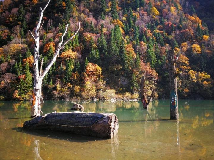 奶子沟,现在奶子沟著名的八十里彩林便正式呈现出来。不过还未大面积成片出现,更多的是绿色、黄色、棕色、紫色交叉错落,五彩斑斓,在阳光照射下也煞是好看。