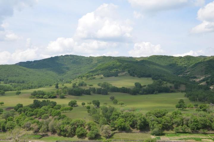 """蛤蟆坝,蛤蟆坝的湖水蜿蜒在丘陵的峡谷之中,在草原上,这样""""两山夹一沟""""的地貌十分独特,也提供了更开阔的视野,让这里成为了摄影家的天堂。参观的路径是沿着山路向下走,可以从山坡顶到达湖水边,我在半山腰处停下,没有再往前走,静坐在草地上,看万里无云秋色静,上下天光,共水交辉映。"""