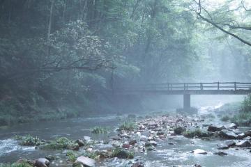 重庆出发湖南张家界4日自驾游:穿越张家界森林公园-大峡谷玻璃桥-走近阿凡达4日自驾游