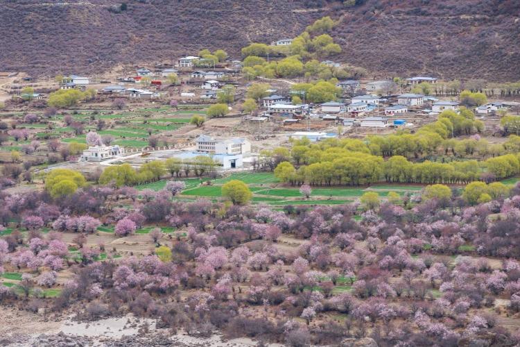 西藏林芝周边自驾游,这9个景点值得打卡