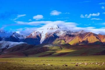 拉萨集合到西藏7日自驾游:拉萨-那曲-羊八井地热-奇美萨普7日自驾游