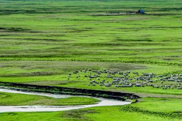 [呼伦贝尔]内蒙古呼伦贝尔6日亲子自驾游:根河湿地-俄罗斯家访-中俄边境-彩带河滑草6日亲子游