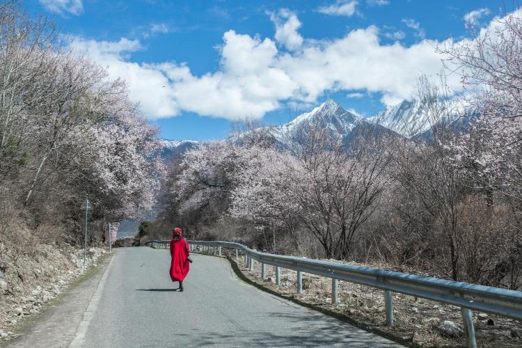 西藏自驾游最佳路线,每一条都是经典