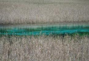 芦苇海是一个半沼泽湖泊,这里生长着很多芦苇。每年春夏时节,这里满眼碧绿;秋冬之际,芦苇一片金黄;每当芦苇花盛开的时候,到处是鹅绒绒的芦花。芦苇海的海拔已达到2140米,这里的芦苇没有低海拔地芦苇那么高大。在芦苇海中间有一条飘逸的水带,蜿蜒穿行于芦苇海中,把芦苇海平分成两半,这条水带有被称为玉带河。