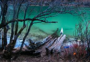 """五色海藏语名为:木底措,位于牛奶海上方,仙乃日与央迈勇之间。因在阳光照射下,产生五种不同的颜色而得名。五色海海拔4500米,在牛奶海右侧的一个陡坡之后,湖面呈圆形,湖水清澈,在阳光的照射下,折射出五彩光芒,殊为壮观。五色海是当地人心中的神湖,据称能""""反演历史,预测未来""""。佛教典籍中盛赞该湖,称其与西藏的羊卓雍错齐名。"""