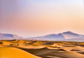 """塔克拉玛干沙漠被称作是""""死亡之海"""",位于南疆塔里木盆地中心,是中国最大的沙漠,也是世界第十大沙漠,同时亦是世界第二大流动沙漠。在世界各大沙漠中,塔克拉玛干沙漠是最神秘、最具有诱惑力的一个,塔克拉玛干腹地被评为中国五个最美的沙漠之一。沙漠腹地沙丘类型复杂多样,复台型沙山和沙垄,宛若盘踞在大地上的条条巨龙;塔型沙丘群,高度和规模使埃及的金字塔黯然失色。"""