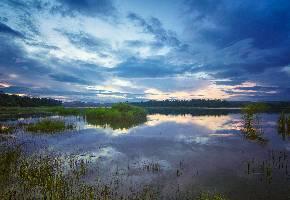 东鄱阳湖国家湿地公园