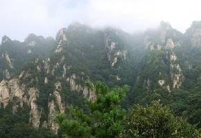 王顺山国家森林公园
