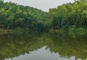 月城湖的湖水来自青城山上老霄顶的小溪,流淌到开阔的山间谷地,成为了一个小湖。这里在丈人峰和青龙岗之间。湖泊四周草木茂盛,湖水碧绿,周围的山谷倒影在水中,景色清幽,十分的舒服。湖中有游船,可以坐船游湖。