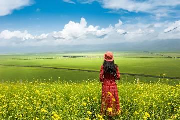 暑期【行摄西北-西海情歌】青海湖、祁连山、卓尔山、门源油菜花 7日自驾游