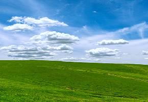 昭苏大草原是中国最著名的草原之一,也是到伊犁必去之地。这里广袤壮美,草原石人、草原土墩墓、岩画被视为昭苏草原的三大奇观,在昭苏通向伊宁市和特克斯等地的公路两旁均可拍照。夏季万亩油菜花在雪山下开放,白皑皑的高山与金黄色的花海连绵无垠,是拍照摄影的绝佳胜地。