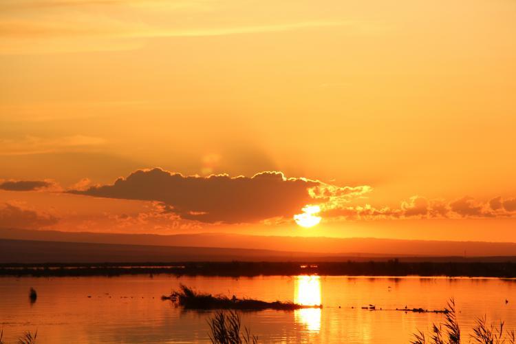 海上魔鬼城是2019年的新景点,同样是雅丹的地形,但我认为与乌尔禾的世界魔鬼城相比,我并不逊色。此处依乌伦古海而建,在魔鬼城的尽头是美丽的乌伦古海,北疆第一大湖。这是很多鸟的栖息地,陡峭的壁上有燕鸥的巢穴。