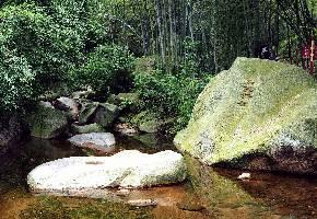 龙井沟位于六安市裕安区与金寨县独山镇的西边,龙井沟是一条长约2.5公里的峡谷,峡谷两岸悬崖峭壁高耸,谷中一路有流水相伴,河床被硕大的鹅卵石挤压的弯弯曲曲,亲水、看奇石,游玩起来很是闲适。四周竹林环绕,非常舒服。谷中奇石有仙人脚、钻天石、玉玺石等,造型各如其名。