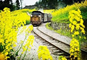 嘉阳小火车