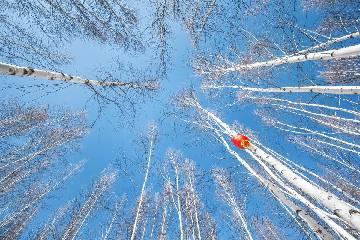 呼伦贝尔草原、森林自驾穿越(品质版)10日游