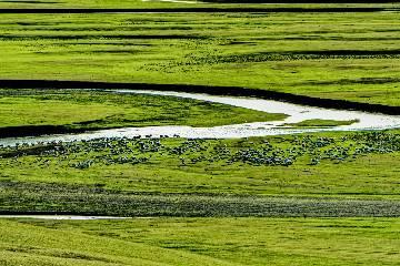 暑期【草原赞歌】呼伦贝尔大草原环线—海拉尔·满洲里·室韦·额尔古纳7天落地越野自驾