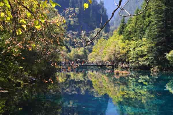 五花海这是我所在的九寨沟中的一个景点,也是一个风景如画的景点,它的色彩鲜艳,吸引着游人猎取色彩的目光,尤其适合拍照的人来此留影,将山河的美丽带回家。