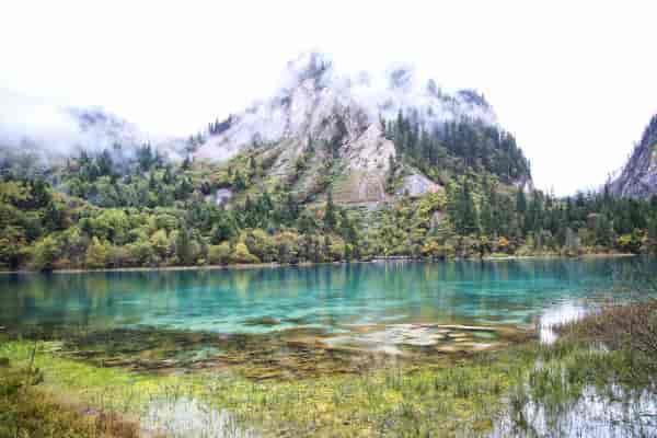 五花海在入秋以后,湖边四面的山坡便笼罩在一片绚丽多彩的秋色之中,五花海中的彩叶很多都是在湖边的出水口附近,一串串彩叶交错成锦,如火焰流金,色彩丰富,姿态万千。