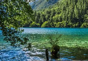 镜海,因为湖面一平如镜,故得其名。这里是九寨沟看倒影的好地方。每当晨曦初露或朝霞遍染之时,蓝天白云、远山近树,尽纳海底。早9点前和晚5点后无风的时候,是拍摄镜海倒影的最佳时间。镜海紧邻在空谷的下游,湖呈狭长形,长约一公里,为林木所包围。对岸山璧像一座巨大的石屏风。