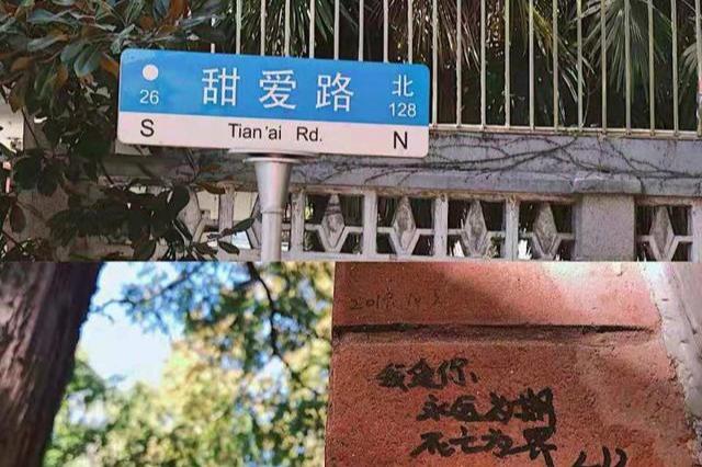 自驾游上海周边,这些景区最好玩最省钱