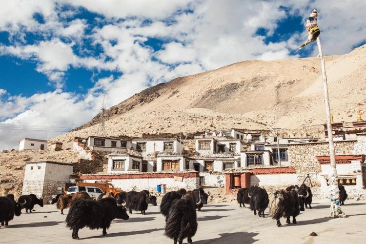 西藏日喀则旅游景点——绒布寺